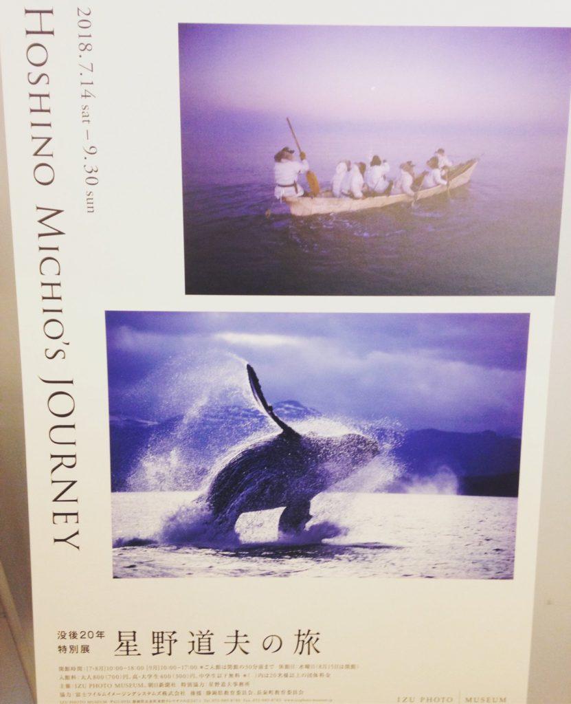 星野道夫さんの没後20年特別展「星野道夫の旅」