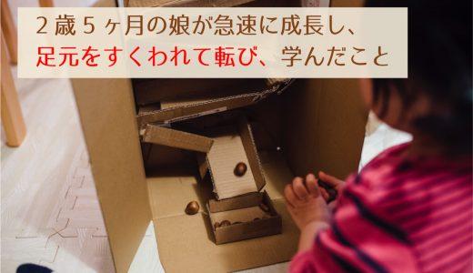 2歳5ヶ月の娘が急速に成長し、失敗から学んだこと