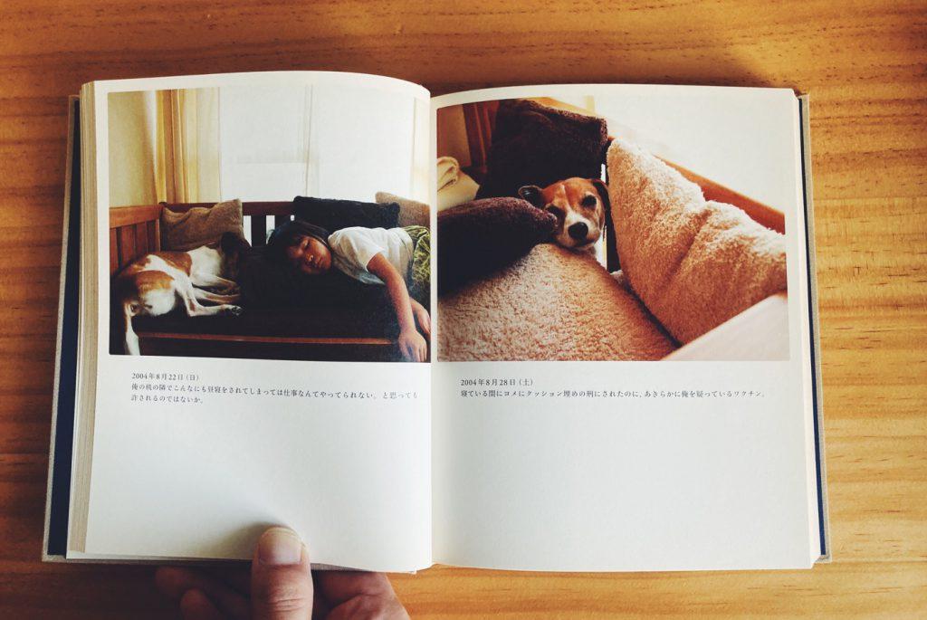 ダカフェ日記