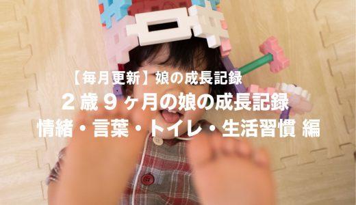 2歳9ヶ月の娘の発達(情緒・言葉・トイレ・生活習慣編)