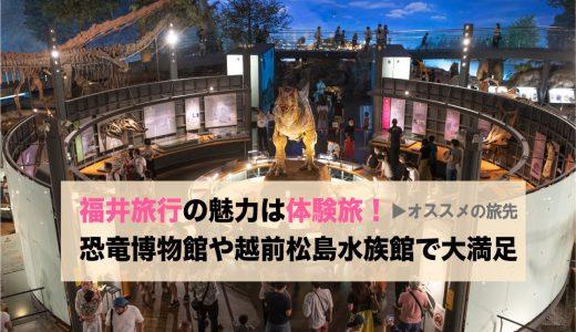 【オススメの家族旅行】福井旅行の魅力は体験旅!恐竜博物館や越前松島水族館で大満足